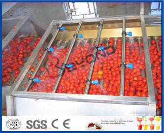 خط تجهيز الطماطم