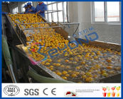 Stepless Shift Fruit And Vegetable Processing Device , Fruit And Vegetable Washer Machine