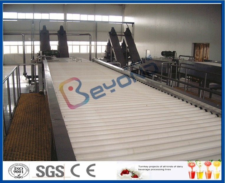 Vegetable / Fruit Processing Equipment With Automated Sorting System CE / ISO9001