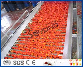 تجهيز الطماطم آلة زراعة الطماطم خط كامل/شبه التلقائي 2-50 طن/ساعة